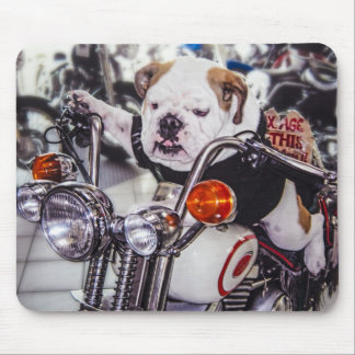 Bulldog on Motorcycle Mouse Mat