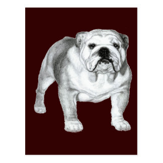 Bulldog Painting Post Cards