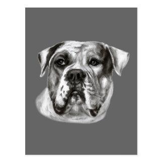 Bulldog Painting Postcard