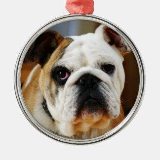 Bulldog Premium Ornament