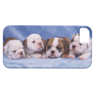Bulldog puppies case for the iPhone 5