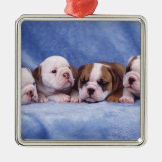 Bulldog puppies christmas ornament