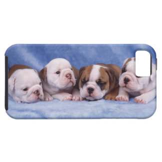 Bulldog puppies iPhone 5 cover