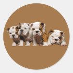 Bulldog Puppies Sticker