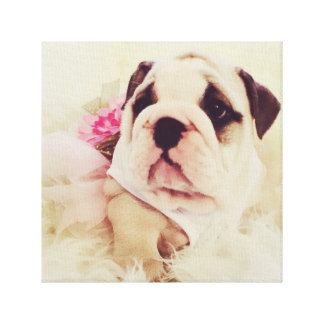 Bulldog Puppy Canvas By Premiado