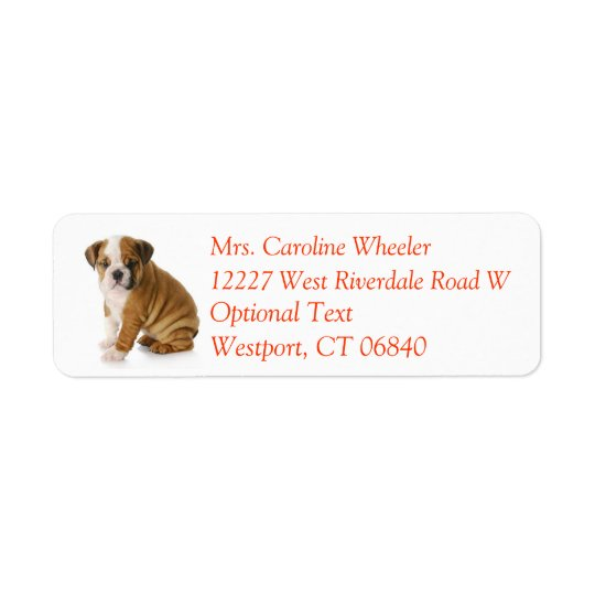 Bulldog Puppy Dog Return Address Name Label Return Address Label