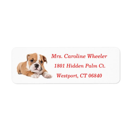 Bulldog Puppy Dog Return Address Red Name Return Address Label