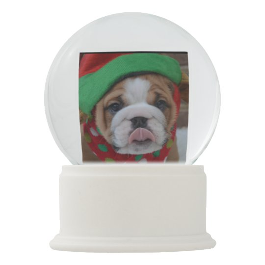 Bulldog Puppy Snow Globe