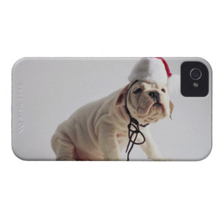 Bulldog Puppy Wearing Santa Hat iPhone 4 Covers