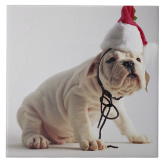 Bulldog Puppy Wearing Santa Hat Tile
