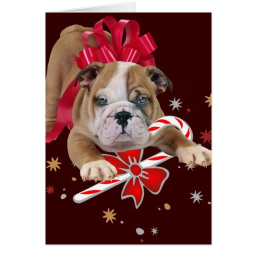 Bulldog puppy with red bow and candy cane greeting card