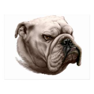 Bulldog, So Ugly He's Cute Postcard