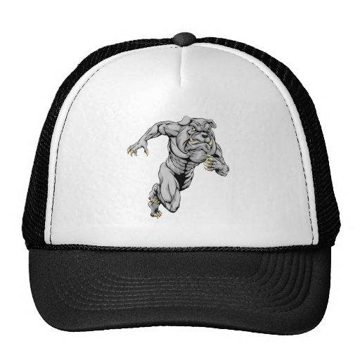 Bulldog sports mascot running mesh hat