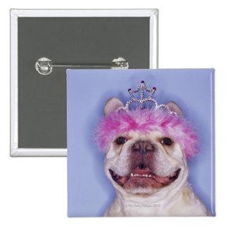 Bulldog wearing tiara buttons