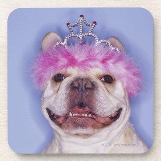 Bulldog wearing tiara coaster