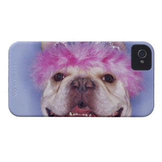 Bulldog wearing tiara iPhone 4 case