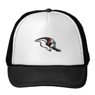 Bulldogs 1 cap