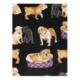 Bulldogs & Shar Peis Postcard