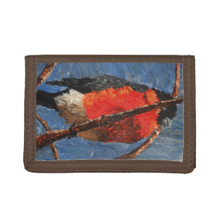 Bullfinch Wallet
