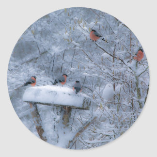 Bullfinches Stickers