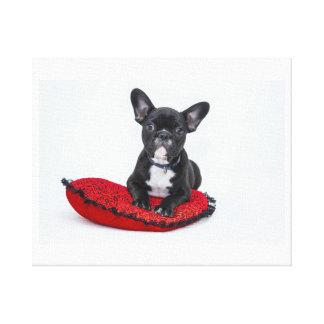 Bullfoh Puppy Canvas Print