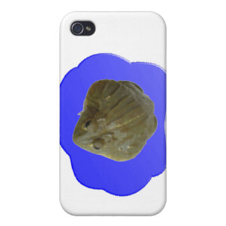 Bullfrog  cover for iPhone 4