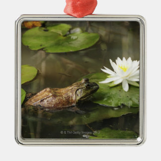 Bullfrog in Lily Pond Silver-Colored Square Decoration