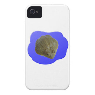 Bullfrog in Pond iPhone 4 Case