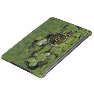 Bullfrog, Rana catesbeiana, adult in duckweed Case For iPad Air
