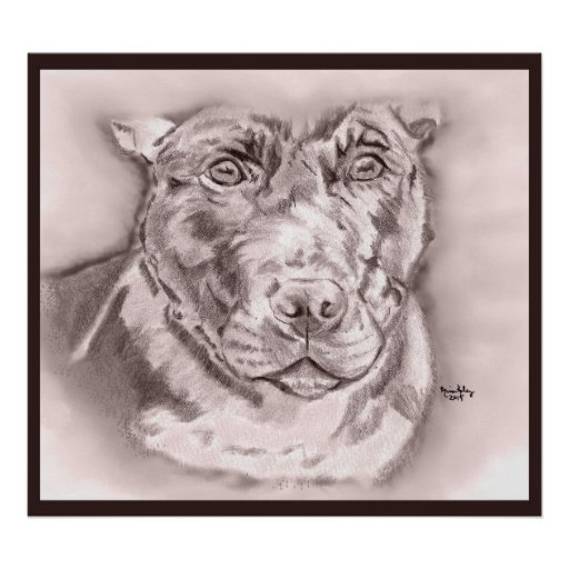Bullied (Staffordshire Bull Terrier sketch) Poster