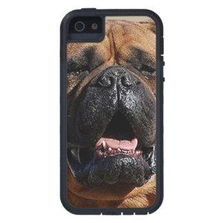 bullmastiff.png iPhone 5 covers