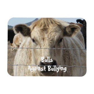 Bulls Against Bullying - Fence - Cowboy Parenting Magnets