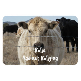 Bulls Against Bullying - Fences - Cowboy Parenting Vinyl Magnet