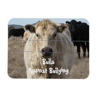 Bulls Against Bullying - Fences - Cowboy Parenting Rectangle Magnet