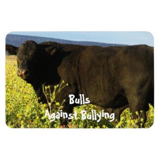 Bulls Against Bullying - Field - Cowboy Parenting Magnet