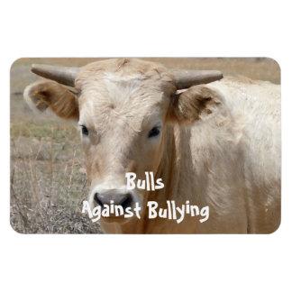 Bulls Against Bullying - White - Cowboy Parenting Vinyl Magnet