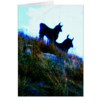 bulls bulls card