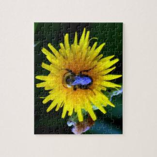 Bullseye Bubble Bee on Dandelion Puzzle