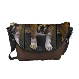 Bully! Adorable English Bulldog Puppy Commuter Bags