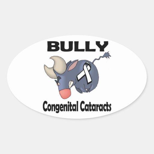 BULLy Congenital Cataracts Stickers