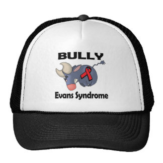 BULLy Evans Syndrome Mesh Hat