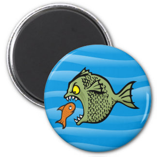 Bully fish refrigerator magnets