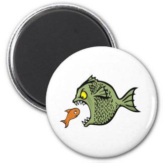 Bully fish refrigerator magnet