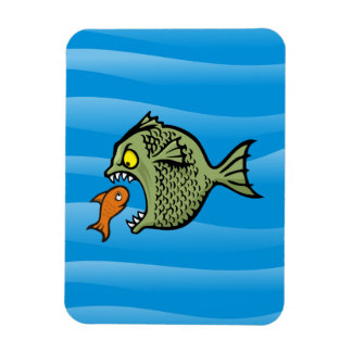 Bully fish rectangle magnet