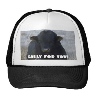 Bully for You! Cattle -  Western Novelty Wear Cap