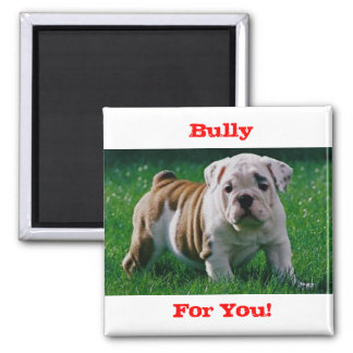 Bully, For You! Square Magnet