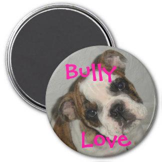 Bully Love Magnet