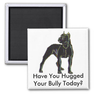 Bully Magnet