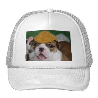 BullyBreeze - Chill - Chillin' Out - Hat