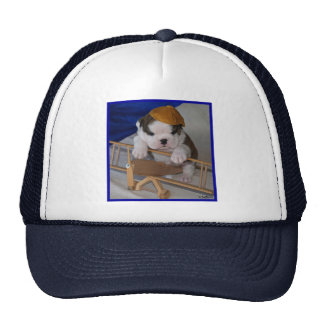 BullyBreeze - Pania - Aviator - Hat